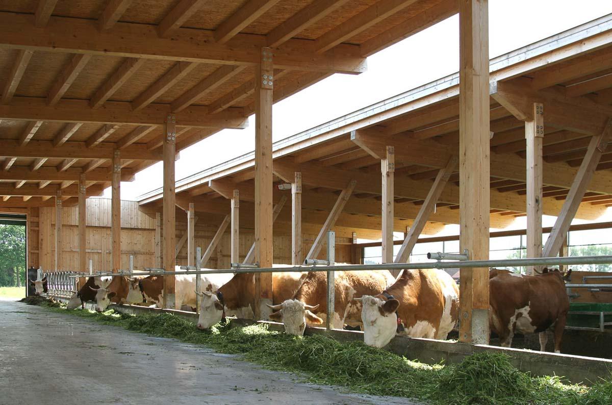 Architekturbuero-Stoetzel-Stumborg-Muenchen-Landwirtschaftliches-Bauen-1